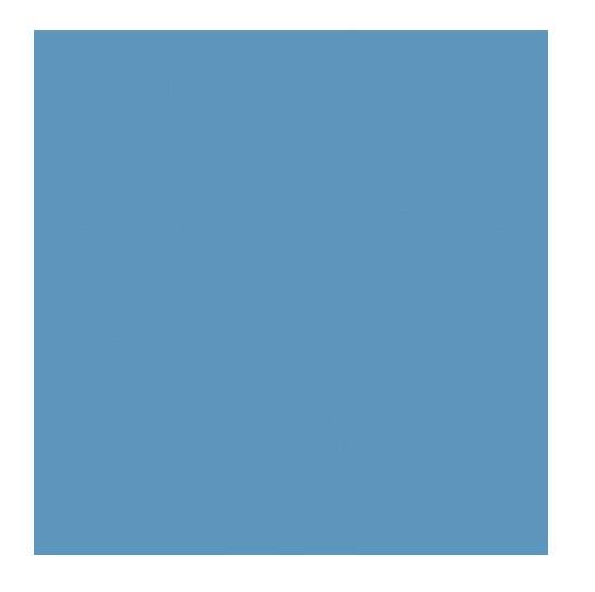 Lebensbaum Atemtherapie